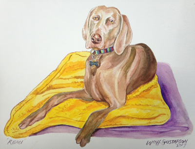 Portrait of a brown dog laying on yellow and purple towels
